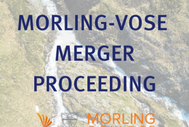 merger proceeding